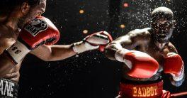 Bermain Judi Boxing Online di Agen Sbobet