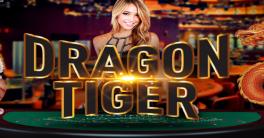 Rumus Khusus Menghitung Kartu Dragon Tiger Online